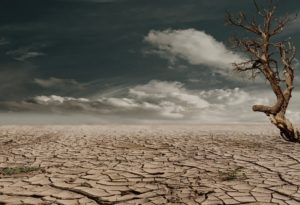 The impact of climate change fears on ethical investing